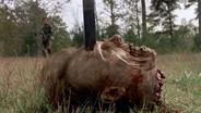 The Walking Dead - Mille modi per uccidere uno Zombie