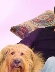 Dharma e Greg